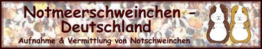 Notmeerschweinchen-Deutschland